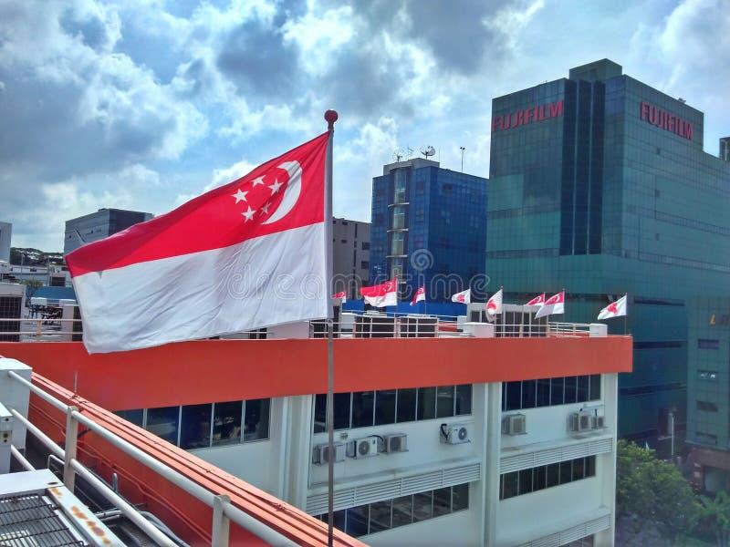 Национальные флаги Сингапура стоковое изображение rf