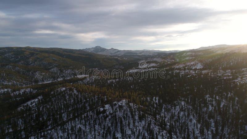 Национальный лес Pike стоковая фотография