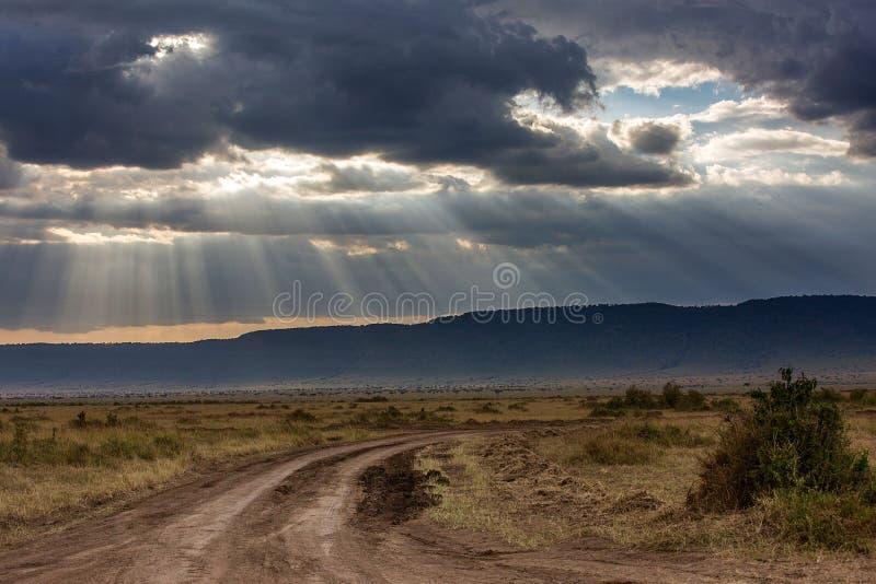 Национальный заповедник Maasai Mara стоковые изображения rf