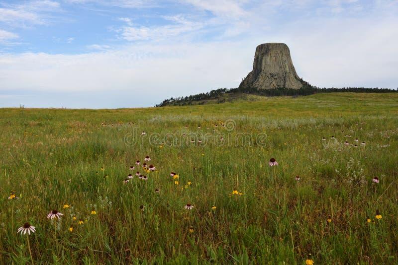 Национальный монумент Вайоминг башни дьяволов стоковое изображение