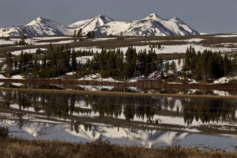 Национальный парк Йеллоустона стоковая фотография