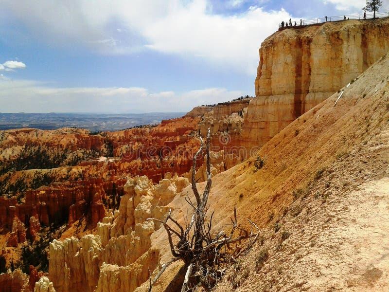 Национальный парк каньона Bryce, Юта стоковые изображения
