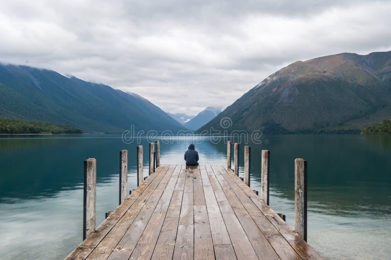 Национальный парк Новая Зеландия озер Нельсон стоковые изображения