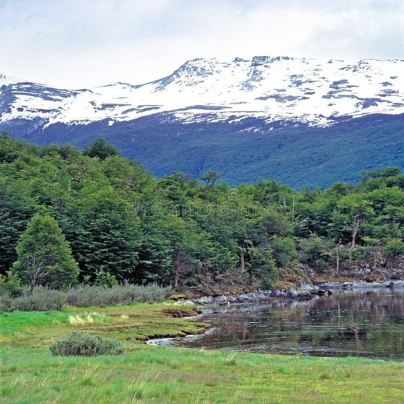Национальный парк Огненной Земли, Аргентина стоковые фотографии rf