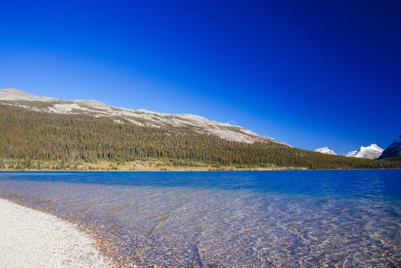 Национальный парк озера смычк, Banff, Альберта, Канада стоковая фотография