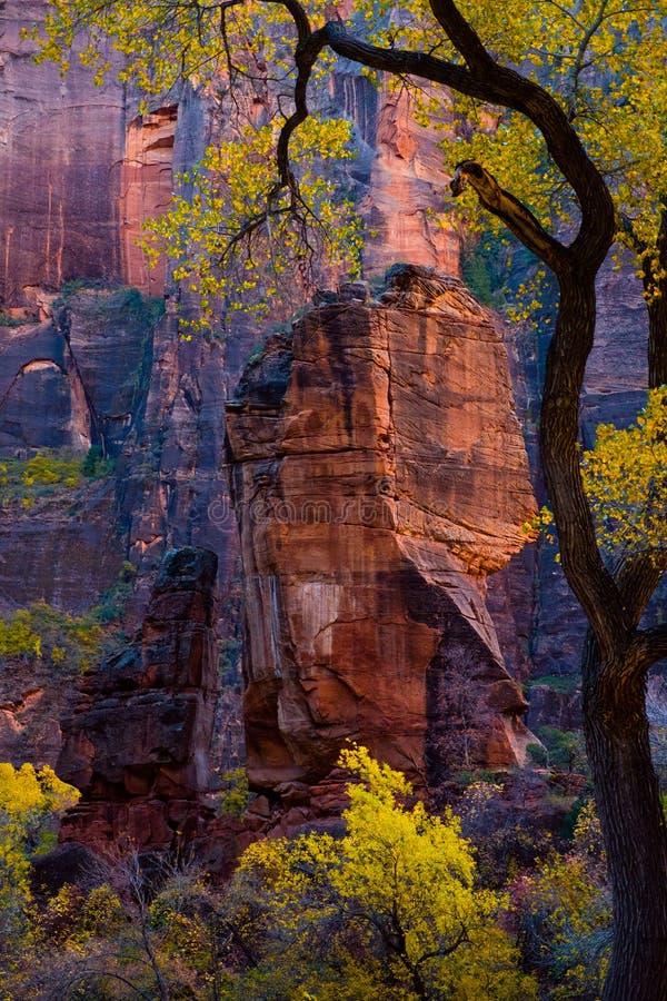 Национальный парк Сиона осенью, Юта стоковое фото rf