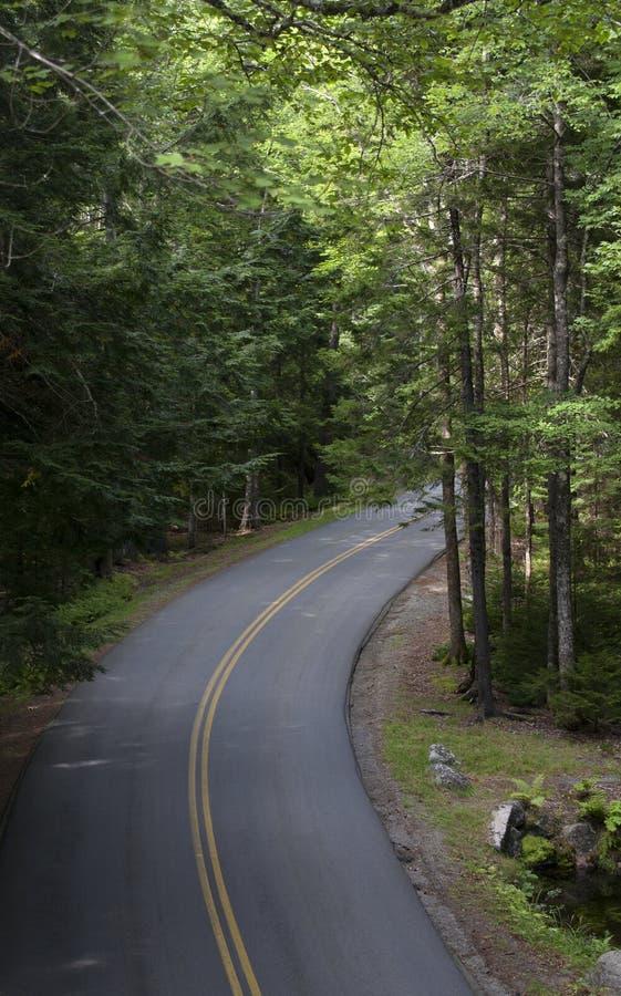 Национальный парк 485 Acadia стоковое фото