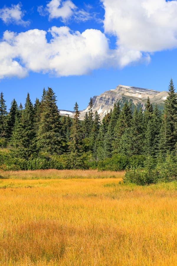 Национальный парк Clark озера гор наклона стоковое фото