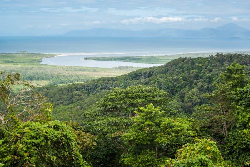 Национальный парк Daintree стоковое фото