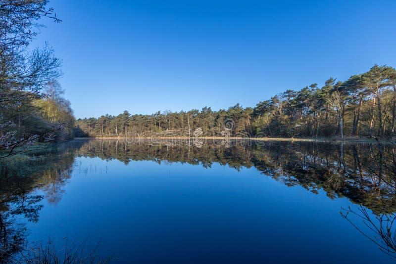 Национальный парк Dwingelderveld Дренте стоковое изображение