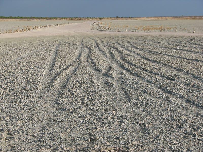 Национальный парк Etosha озера сол стоковое изображение