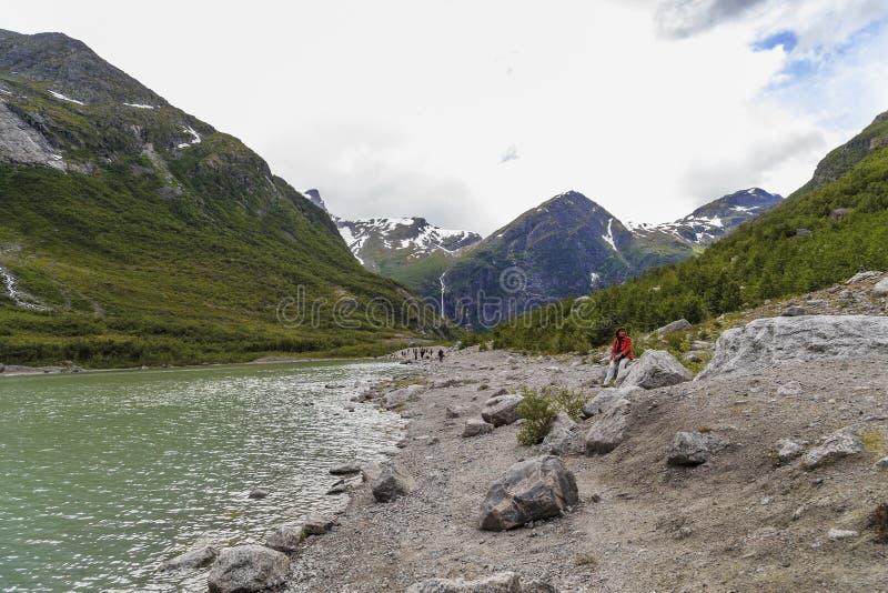 Download Национальный парк Jostedalsbreen, Норвегия Редакционное Изображение - изображение насчитывающей скандинавия, завод: 81801755