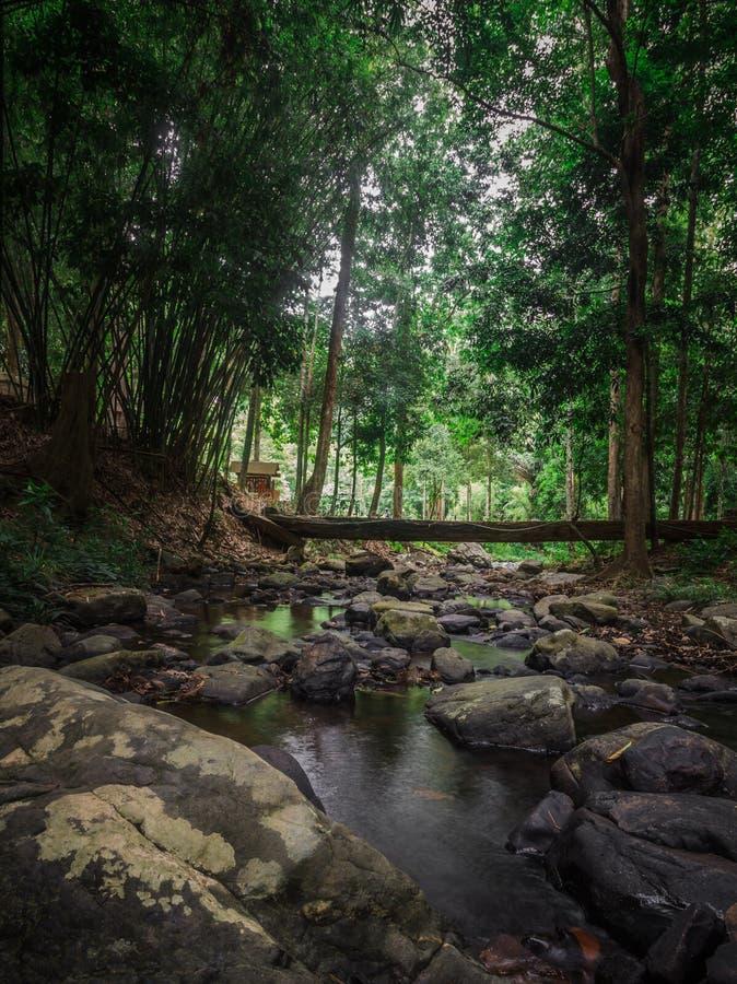 Национальный парк khang nam Khao стоковое изображение rf