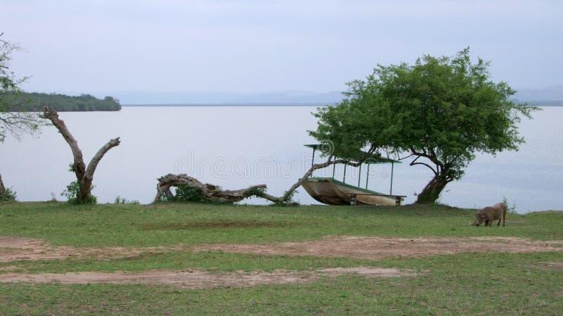 Национальный парк Mburo озера стоковое изображение