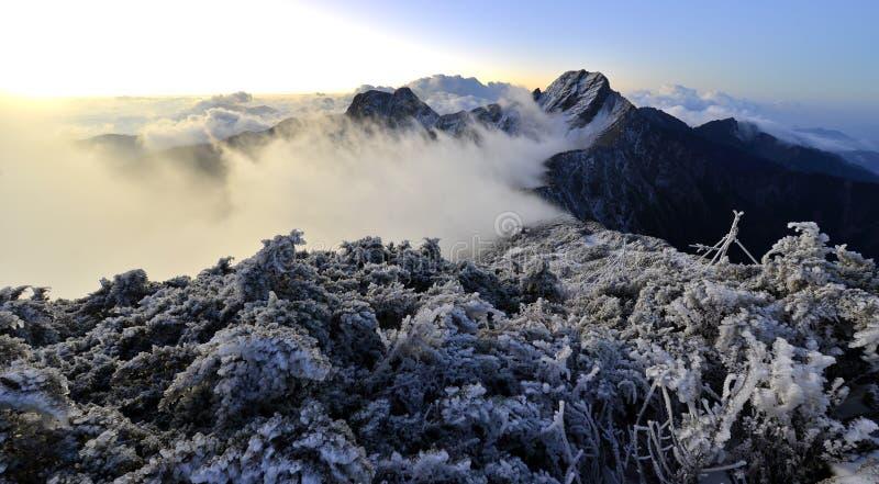 Национальный парк Mt Yushan jady главным образом пик и восточный пик стоковые фотографии rf
