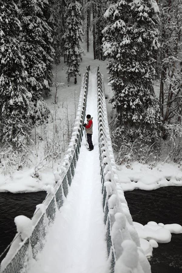 Национальный парк Oulanka пешеходного моста. Финляндия. стоковые изображения rf