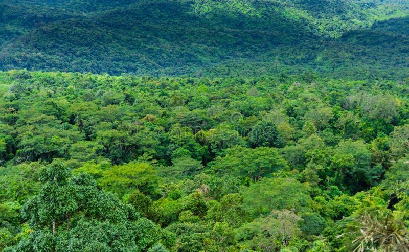 Национальный парк Phu Hin Rong Kla, провинция Phitsanulok стоковое фото