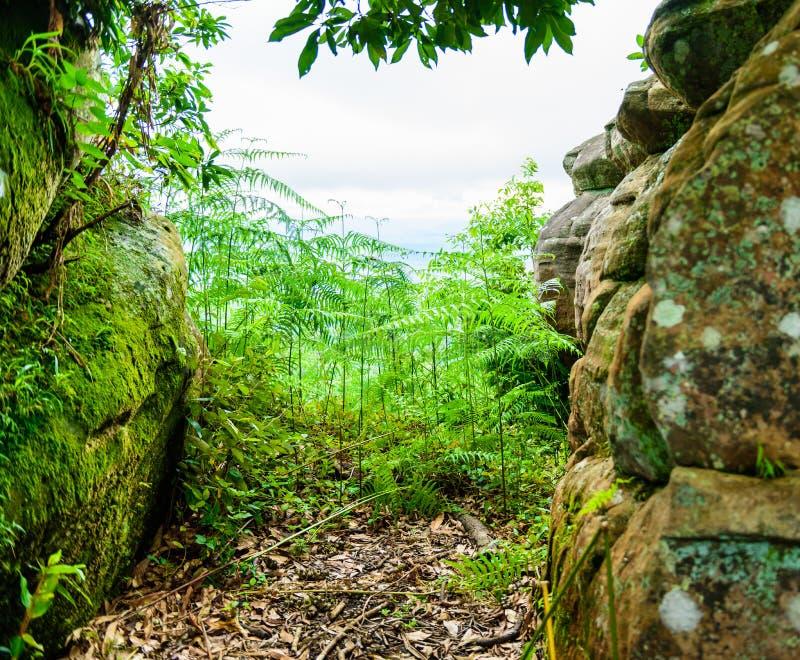 Национальный парк Phu Hin Rong Kla, провинция Phitsanulok стоковое изображение rf