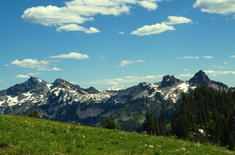 Национальный парк Reinier стоковое изображение
