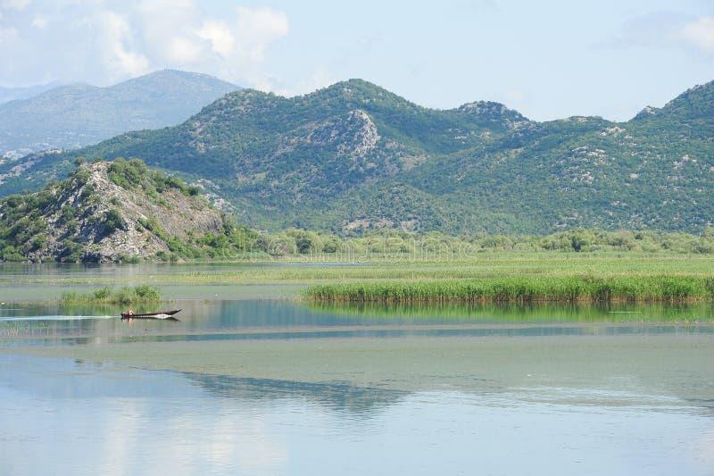 Национальный парк Skadar озера стоковые изображения