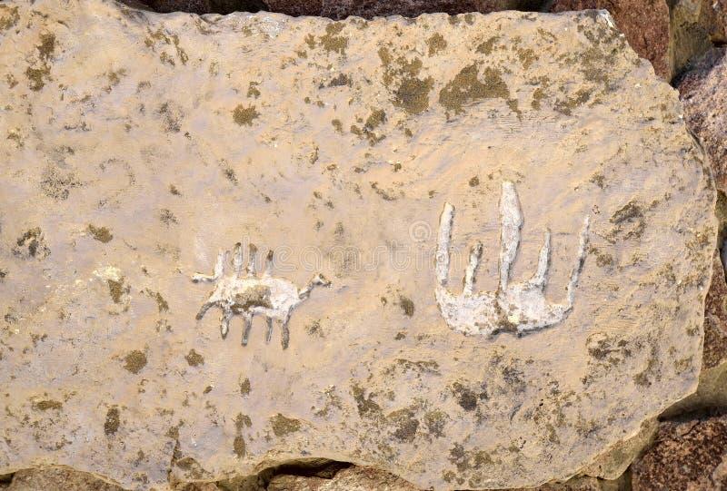 Национальный парк Timna стоковое изображение rf