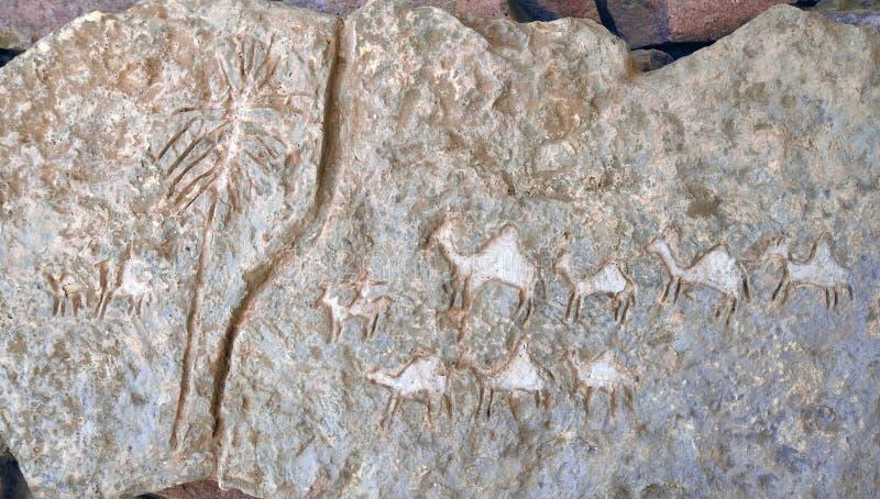 Национальный парк Timna стоковые изображения rf