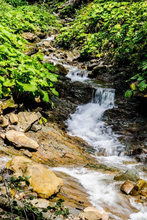 Начала реки горы стоковые фотографии rf