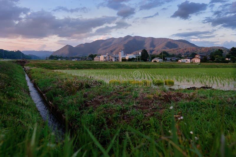 Начало фермеров весны стоковая фотография