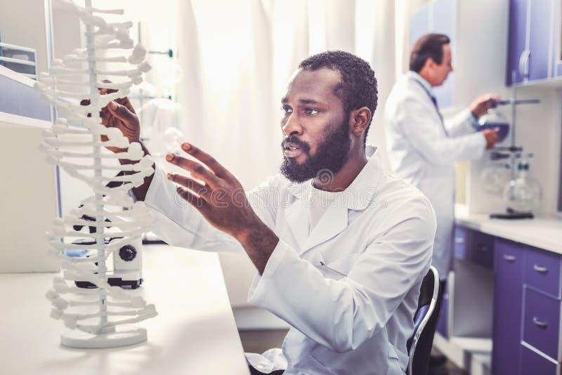 Начинающ умную работу химика занятую в лаборатории стоковая фотография
