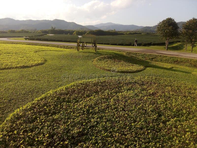 Наша ферма стоковое фото rf