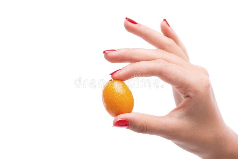 Наши руки помогая нам понять больше одина другого стоковое изображение rf