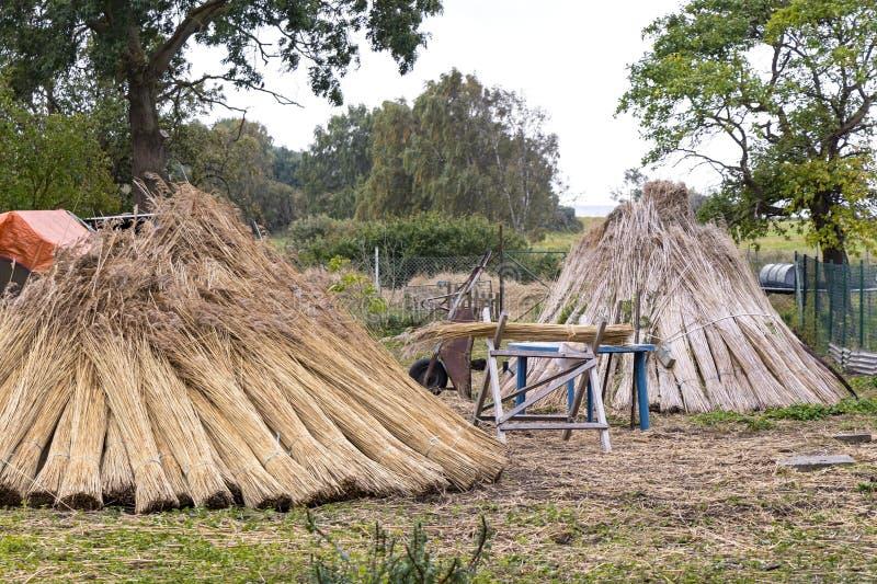 На Балтийском море и в Mecklenburg много домов покрыты с тростниками стоковое изображение