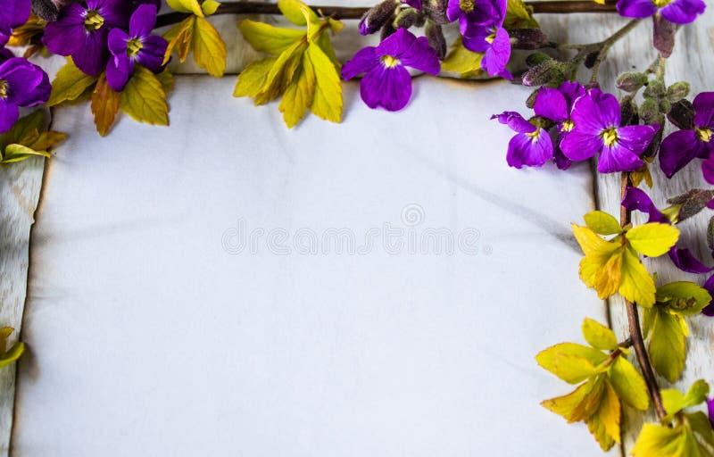 На белых деревянных досках, ветвях с желтыми листами и пурпурных цветках, белом листе бумаги, который сгорели на краях, покидая к стоковые изображения