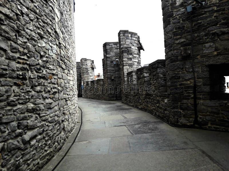На крыше, внутрь средневекового замка Gravensteen замка рассчитывает на пасмурный день, каменные стены и балюстраду ghent стоковая фотография