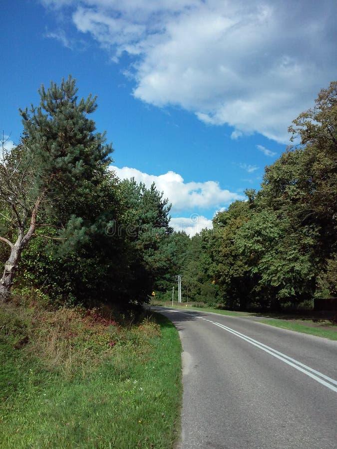 На дороге стоковая фотография