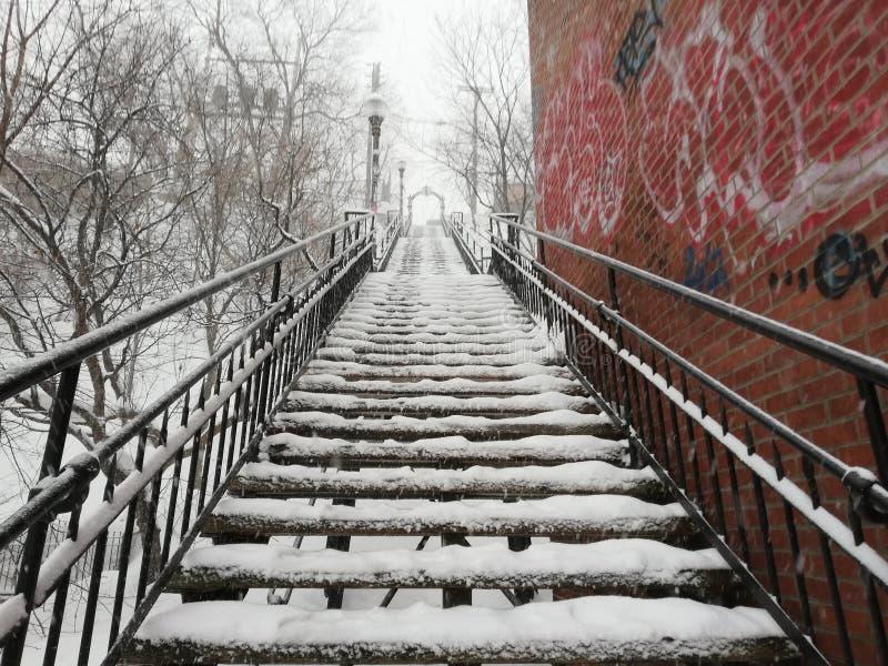 На открытом воздухе лестницы Snowy стоковая фотография