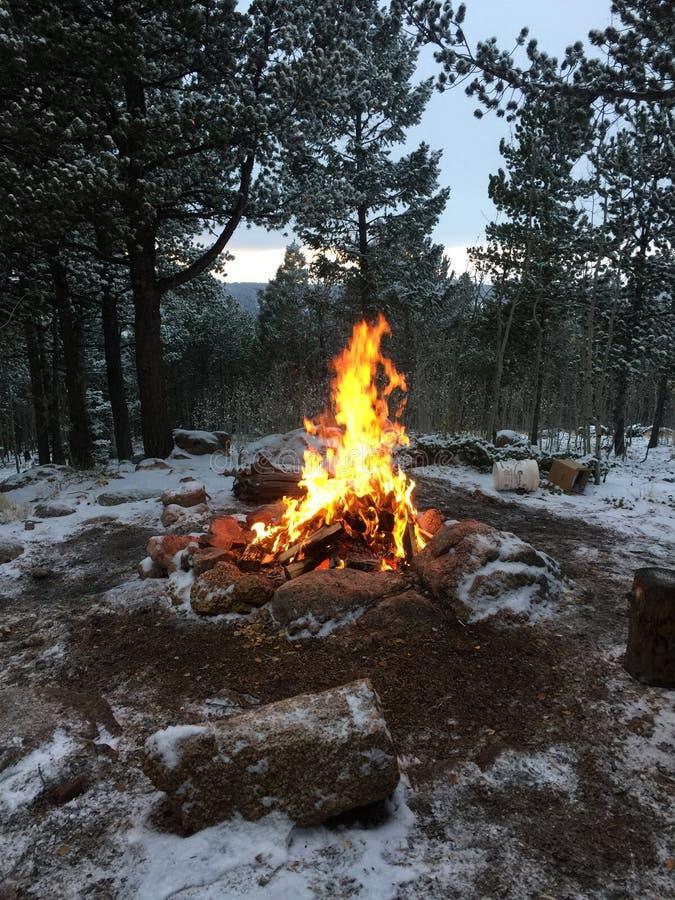 На открытом воздухе огонь в зиме стоковое фото