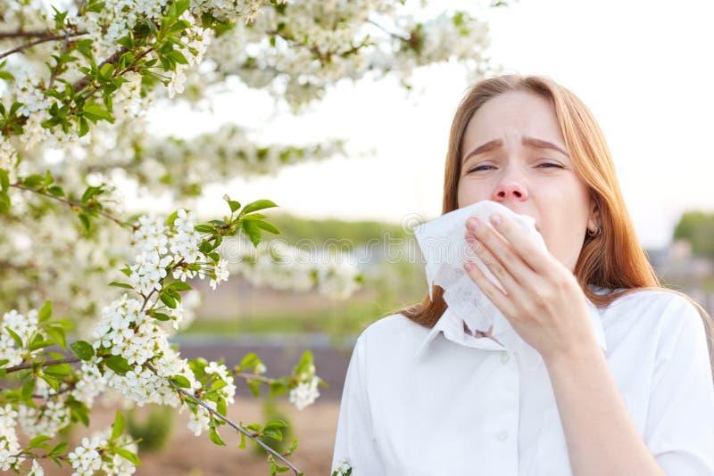 На открытом воздухе съемка раздражанной кавказской женщины чувствует аллергию, держит белое tissuue, стоит около дерева с цветени стоковые изображения