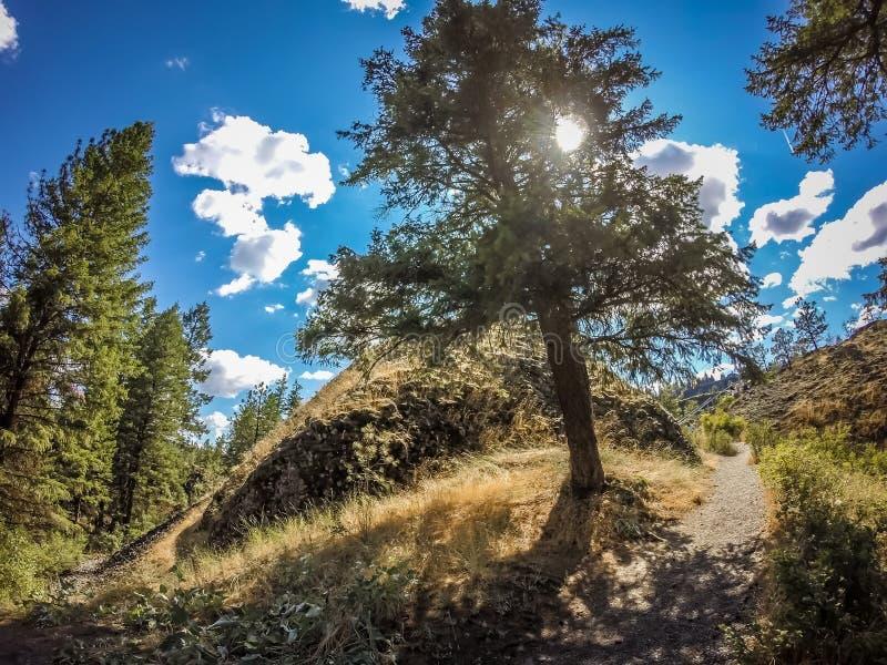 На парке штата шара и кувшина берега реки в spokane Вашингтоне стоковые фотографии rf