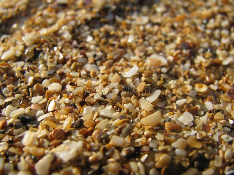 На песке пляжа стоковое фото