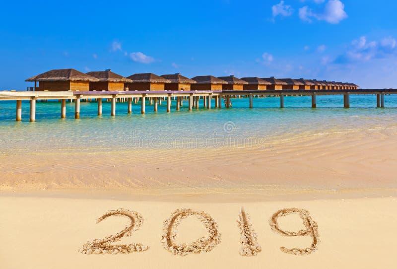 2019 на пляже стоковая фотография rf