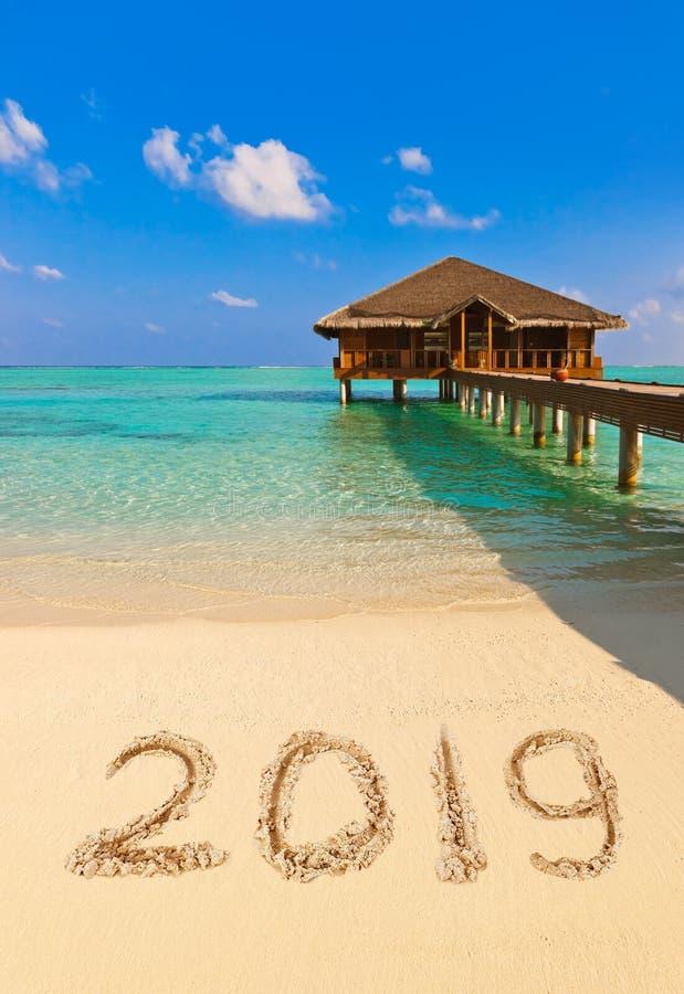 2019 на пляже стоковое фото rf