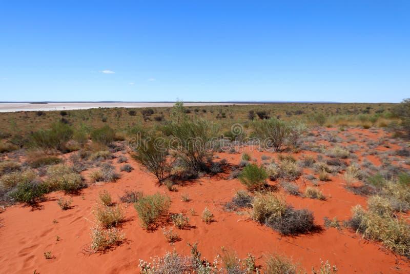 На предпосылке озеро соли в красной пустыне, австралийце Outhback стоковые фотографии rf