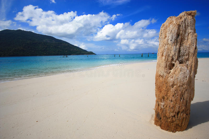 На пляже стоковое изображение