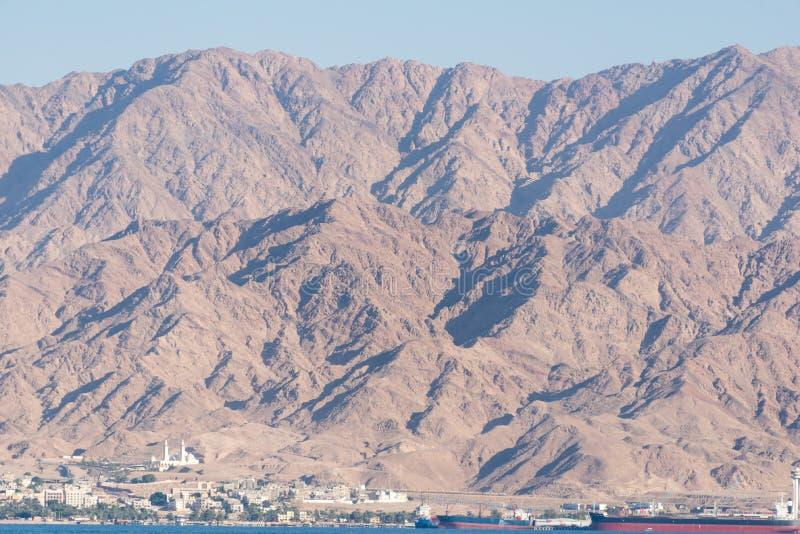На рифе дельфина в Eilat стоковые фото