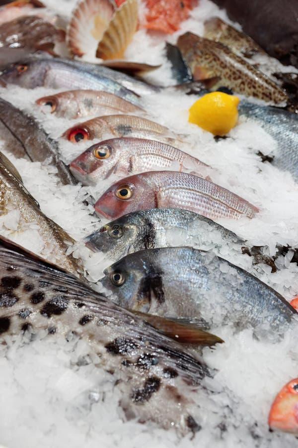 На рыбном базаре стоковые изображения rf