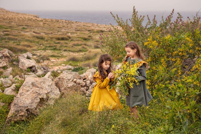 На скалистом плато, 2 винтажных сестры девушек друзья рассматривают цветки мимозы около скалистого берега моря на бурном стоковые фотографии rf