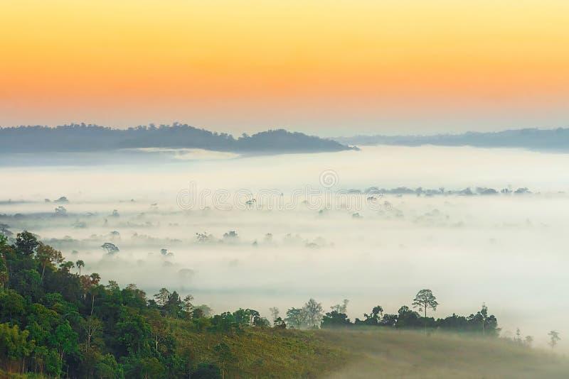 над туманом стоковые фотографии rf