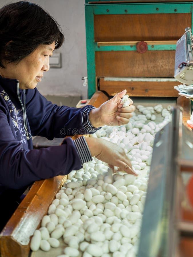 На фабрике 1 шелк номера Сучжоу, Китай стоковые фотографии rf