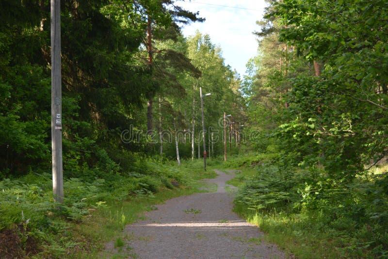 На greenway в Швеции стоковые изображения
